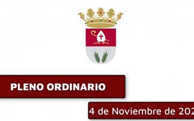 Ordinary Plenary session November 4, 2020