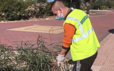 El Ayuntamiento de San Fulgencio incorpora un nuevo trabajador a través del programa de empleo EMPUJU