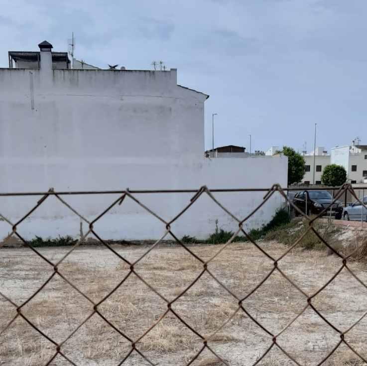 San Fulgencio sanciona a 31 propietarios de solares en 2021 al no mantenerlos en las condiciones adecuadas